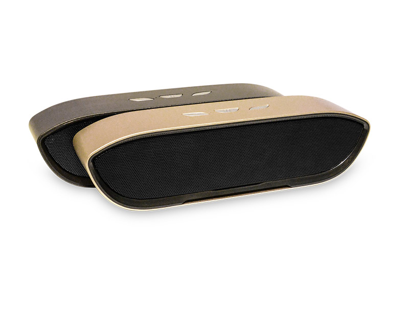 BS12 Bluetooth Speaker